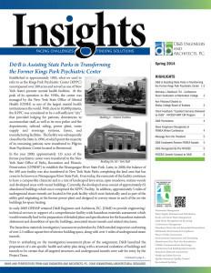 D&B-Insights-Spring-2014