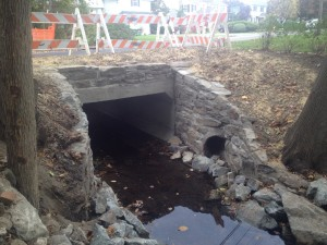 Scarsdale Sheldrake Flood Mitigation 1
