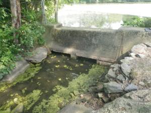 Scarsdale Sheldrake Flood Mitigation 5